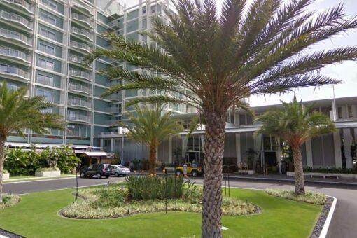 Honolulu resort evacuated as armed suspect barricaded inside room: reports