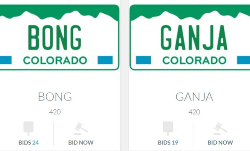 Colorado auctioning weed-themed license plates to raise money for disability fund