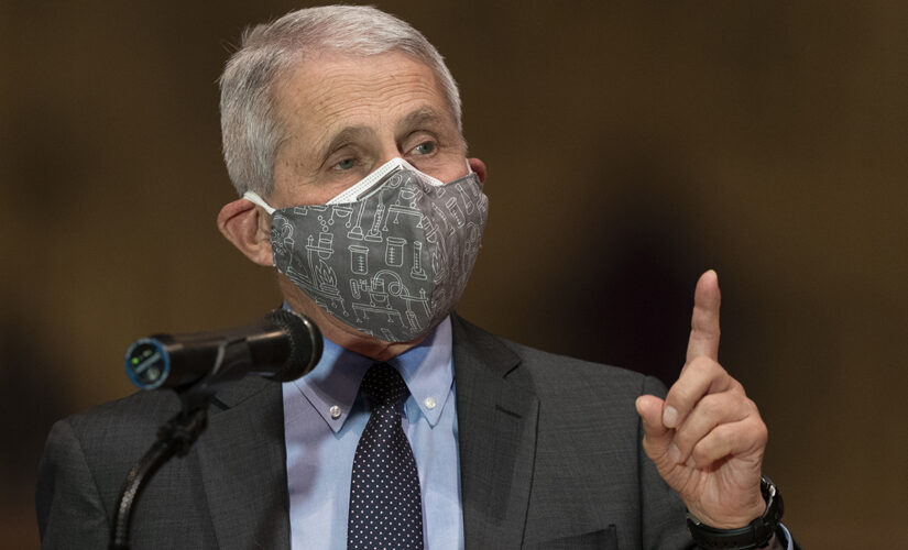 Wall Street Journal editorial: 'Reasonable to ask' why Fauci was slow to accept coronavirus lab-leak theory