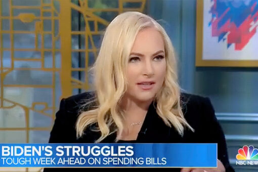 Meghan McCain hits Democrats for 'distaste and outward hostility' toward moderates